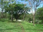 View Larger - Lovely Property, Nicaragua